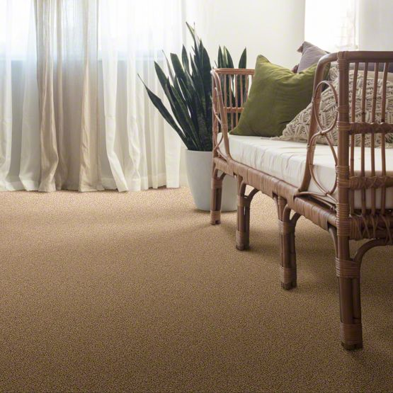 Suave II Stainmaster Carpet